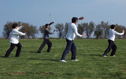 Qi Gong for wellness